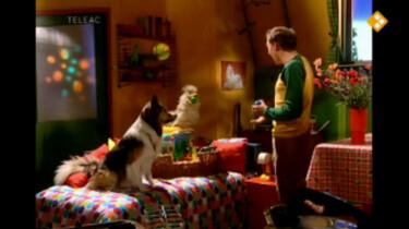 Huisje Boompje Beestje: De liefste hond van de wereld
