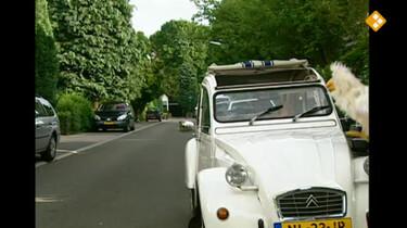 Huisje Boompje Beestje: Tekens in het verkeer