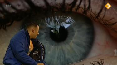 Huisje Boompje Beestje: Het oog