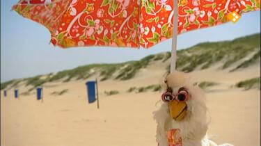Huisje Boompje Beestje: Een dagje op het strand