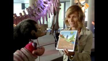 Koekeloere: Dino's