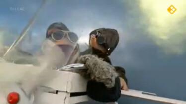 Koekeloere: Piloot