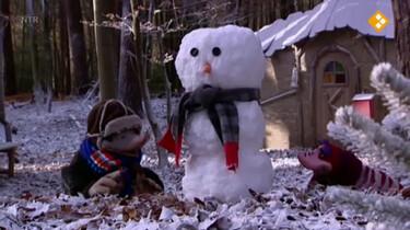 Koekeloere: De eenzame sneeuwpop