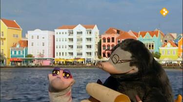 Koekeloere: Moffel en Piertje op vakantie naar de Antillen (deel 1)