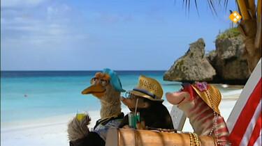 Koekeloere: Moffel en Piertje op vakantie naar de Antillen (deel 2)