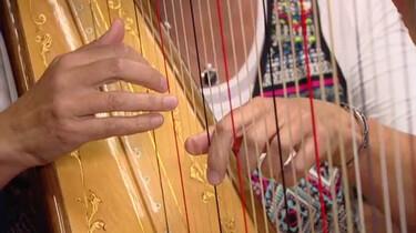 De harp van het Metropole-orkest