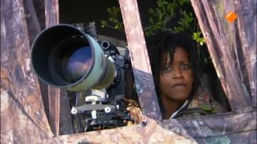 Het Klokhuis: Natuurfilm: techniek