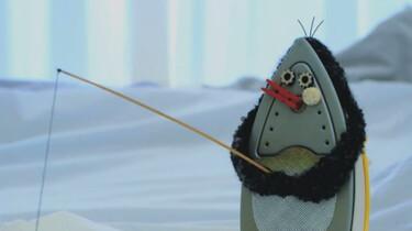 Strijkbout zoekt vis