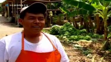 Over-leven in ontwikkelingslanden: Eerlijke handel - Peru