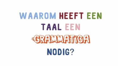 Waarom heeft een taal een grammatica nodig?