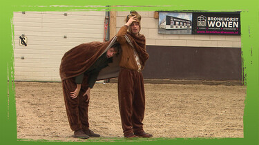 De Buitendienst: Paarden
