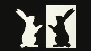 Een konijn in zwart-wit knippen