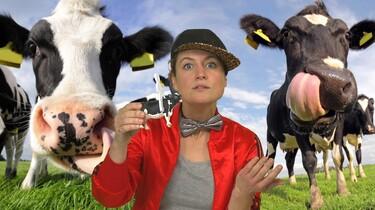 Waarom rijden we niet op koeien?