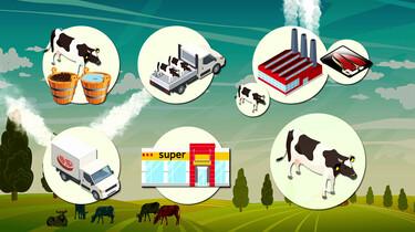 Waarom is vlees eten slecht voor het milieu?
