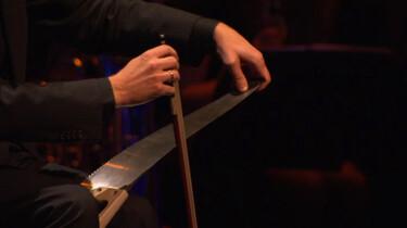 Welke bijzondere muziekinstrumenten zijn er?