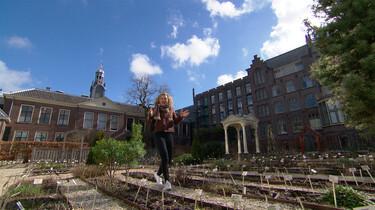 De oudste botanische tuin van Nederland