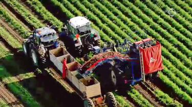 Nederland van boven in de klas: Landbouw