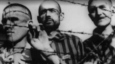 Schrijvers over nazi's