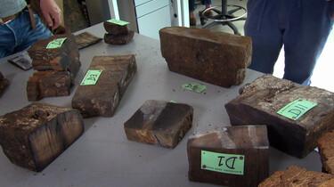 Het dateren van oude stukken hout