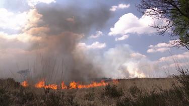 Hoe bescherm je bos en hei tegen brand?
