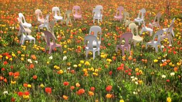 Dansende stoelen in de bloementuin