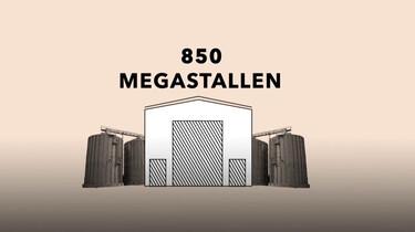 Megastallen in Nederland