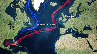 De Antarctische oceaanstroming