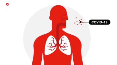Hoe maakt het coronavirus je ziek?