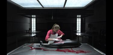 De Kennis van Nu in de klas: CSI aan de kust - De bruinviszaak