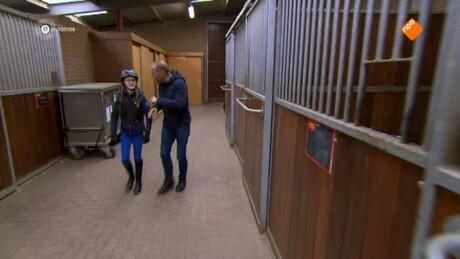 Zappsport | paardrijden, Jeroen Dubbeldam