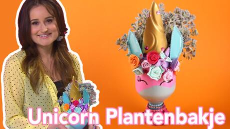 Unicorn Plantenbakje - DIY   Jill