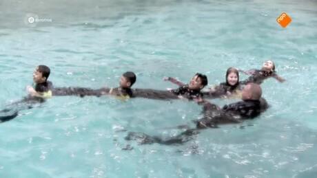 Zappsport   Zwemteam