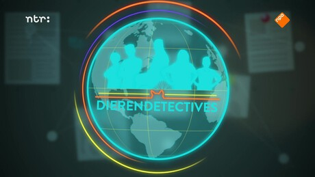 DierenDetectives | Dromedaris Humphrey