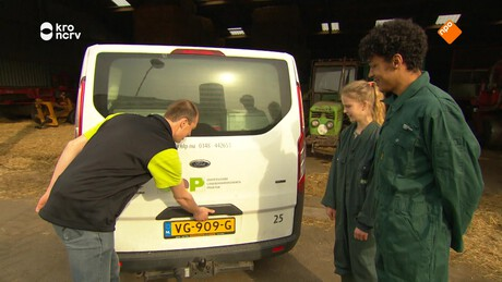 Willem Wever flits | Veearts