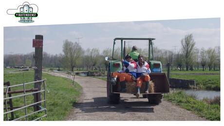 De Grutto: koning van de Nederlandse weilanden
