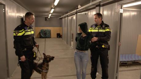 Het Klokhuis | Politiehond