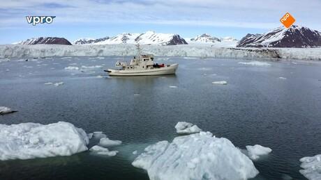 Freeks wilde wereld | Witte ijshelden