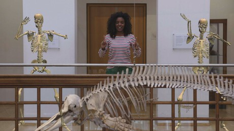 Het Klokhuis | Skelet