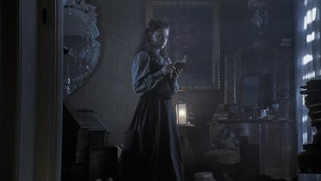 Vampieren in de nacht | De Spark