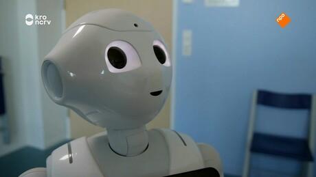 Willem Wever | Robotchirurgie