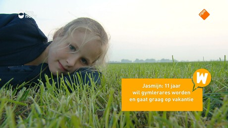 Willem Wever