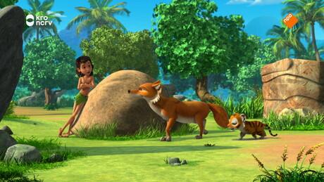 Mowgli de waarzegger
