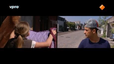 Gek op jou!   Mila vs Jan