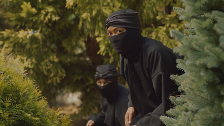 Ninja Nanny | Geheime dochter