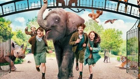 Zoo (ingesproken)