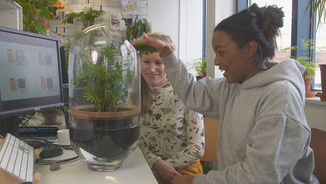 Het Klokhuis | Energie uit planten
