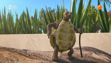De vierde schildpad