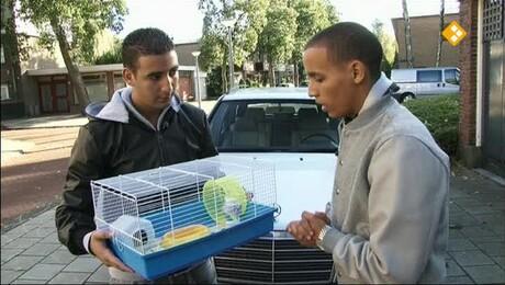 Proefdier | Lucien & hamster