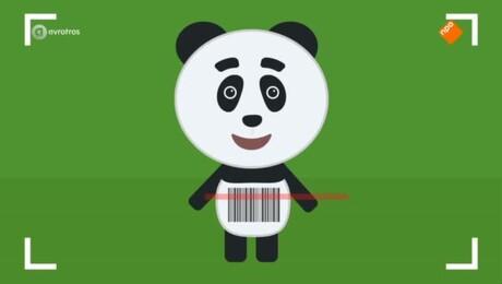Het Pandajournaal | Het Pandajournaal Marathon