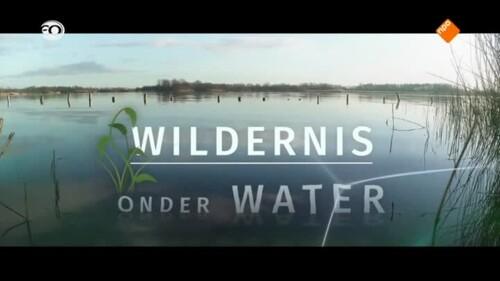 Onder water in de veenplassen